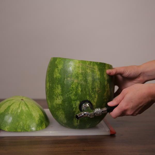 Watermelon Cocktail_4